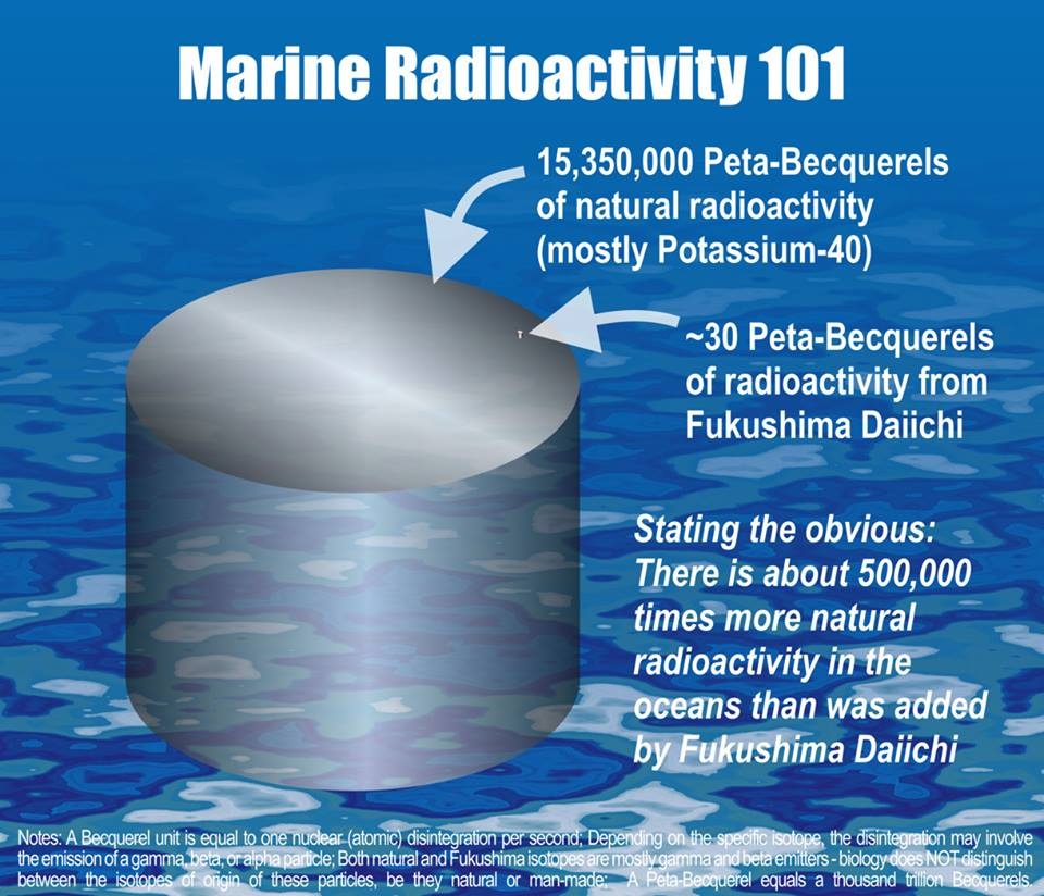 Marine Radioactivity 101